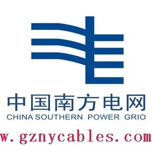 中国南方电网有限责任企业